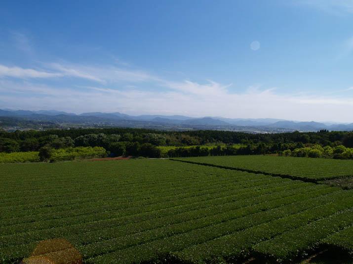 100530 茶畑と米子市南東部.jpg