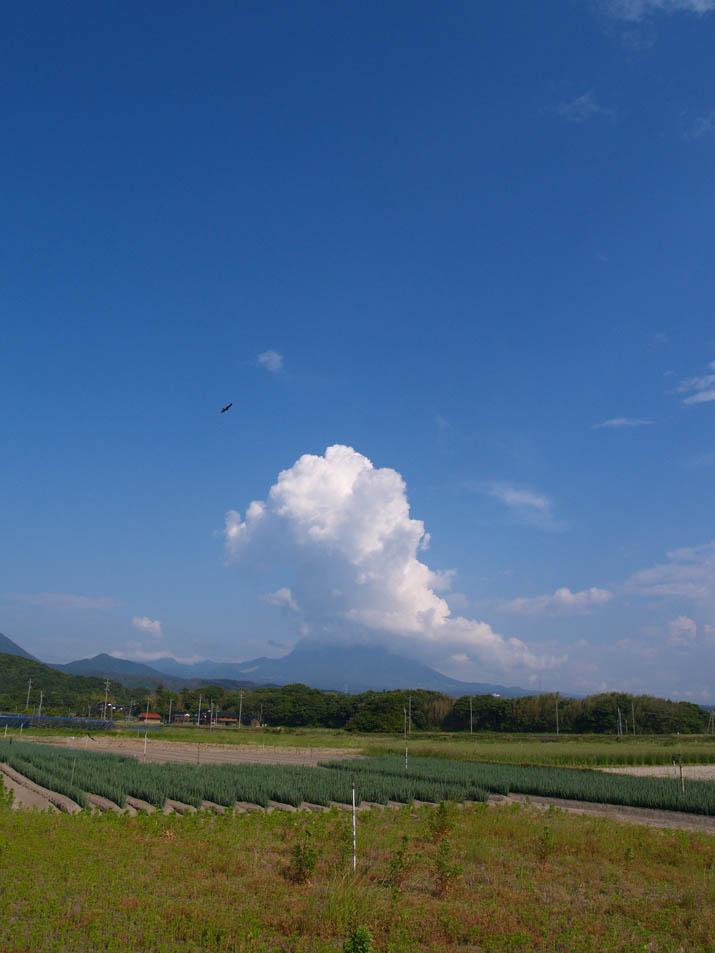 100602 大山の入道雲.jpg