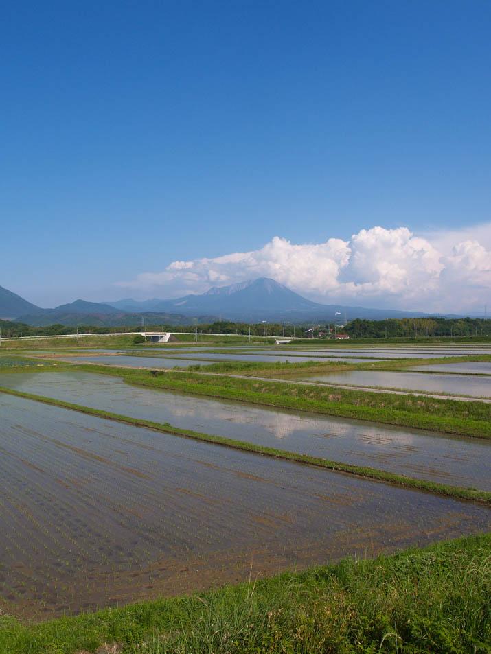 100603 大山と入道雲と水田.jpg