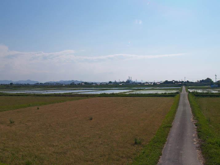100603 水田と一本道.jpg