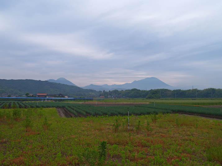 100607 草木の緑と大山のシルエット.jpg