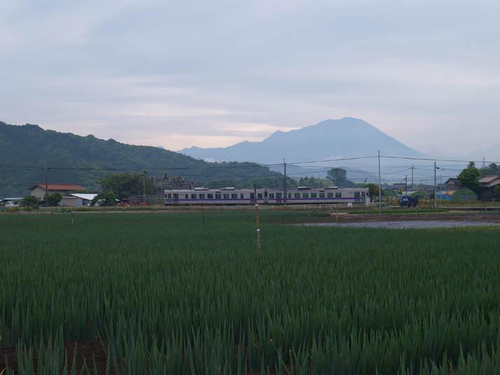 100607 ネギ畑と山陰線列車.jpg