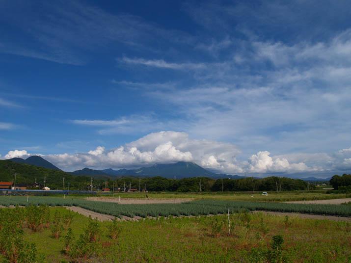 100614 爽やか天気の大山.jpg