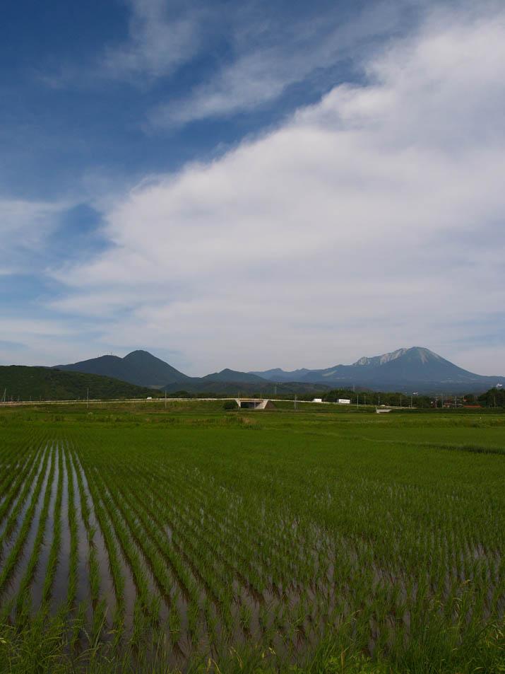 100624 空と田と大山.jpg