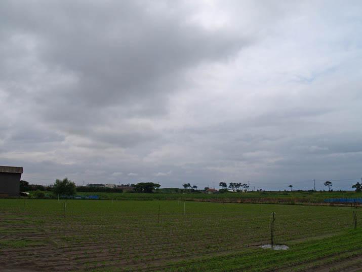 100629 美保湾方向の雲.jpg