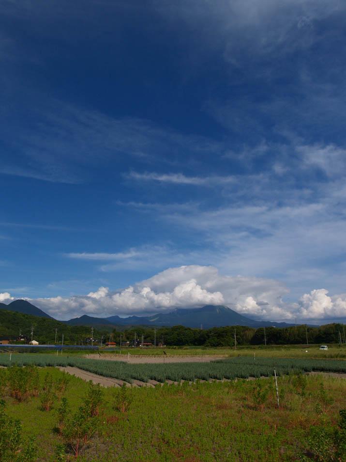 100708 梅雨入り前の大山.jpg