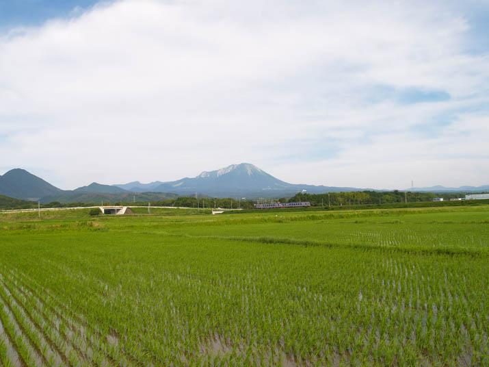 100708 大山と列車.jpg