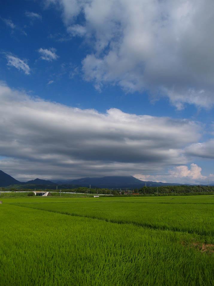 100723 緑の田園と青い空.jpg