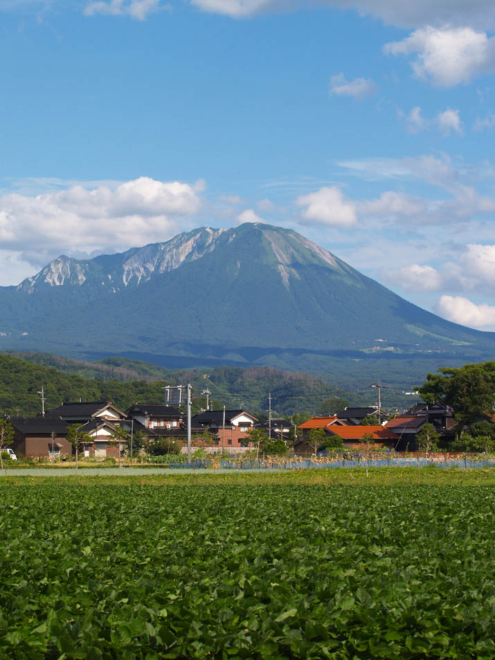 100808 何かの畑と大山.jpg