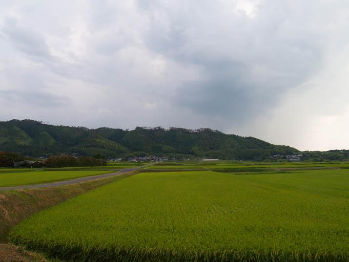 100826 淀江町稲吉.jpg