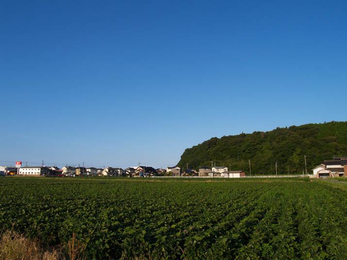 100909 壺瓶山と何かの畑.jpg