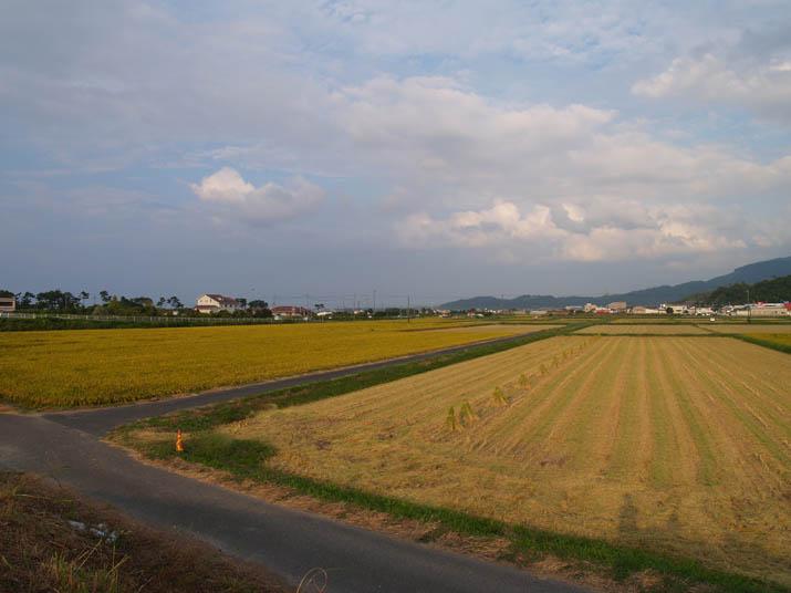 100919 海岸沿いの田園地帯.jpg