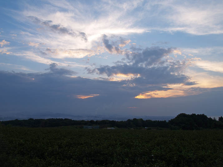 101002 壺瓶山から見る米子の夕暮れ.jpg