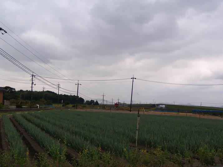 101028 山陰線の列車.jpg
