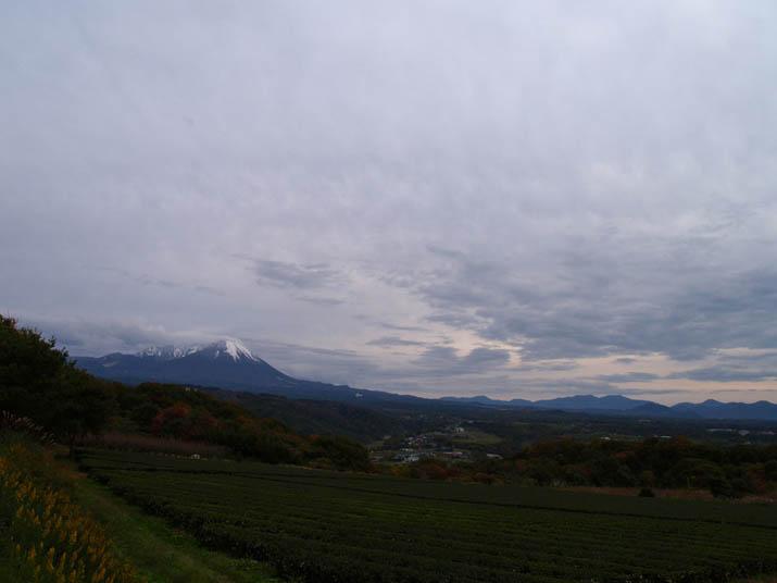 101116 壺瓶山から大山.jpg