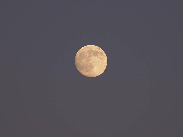 101120 今日の月.jpg