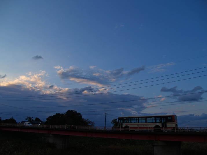 101123 日本交通バス.jpg