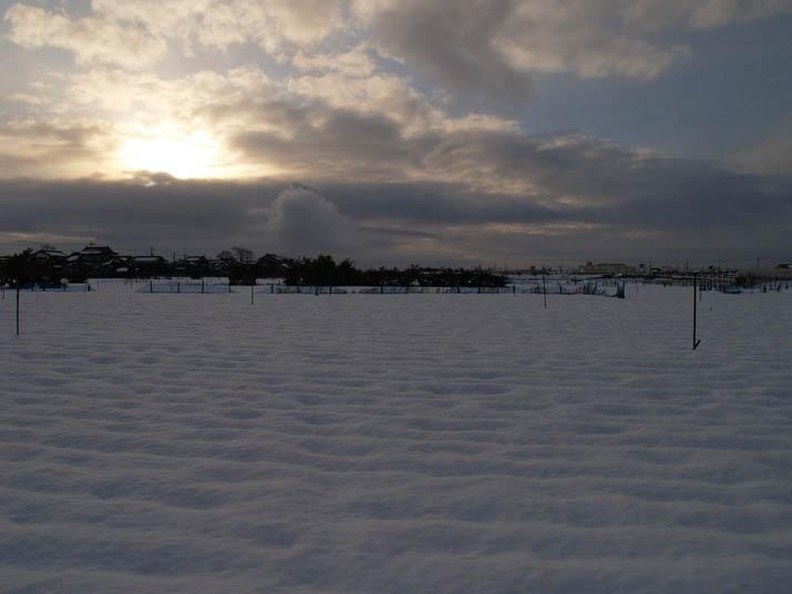 110102 雪原と夕日.jpg