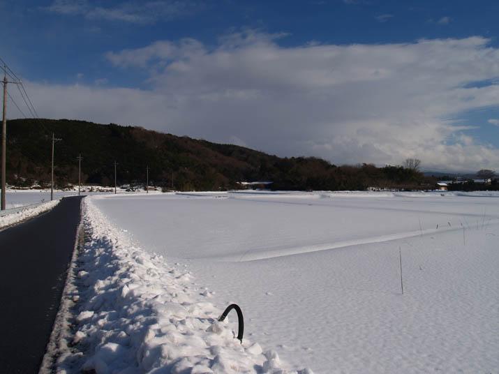 110117 雪原の道と見えない大山.jpg
