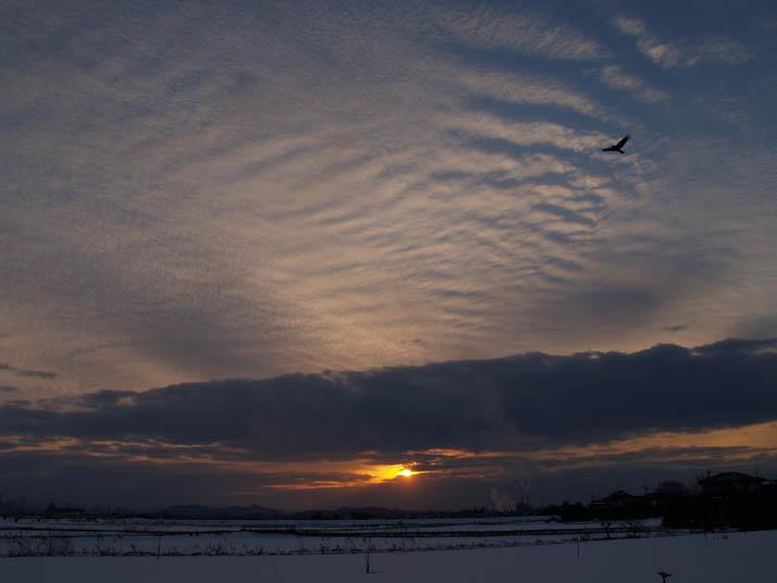 110121 夕焼け空と雪景色.jpg