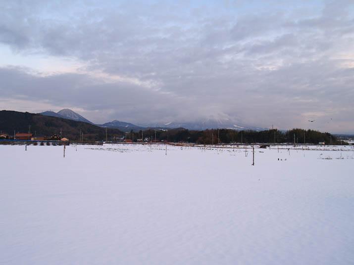 110121 雪景色の大山.jpg