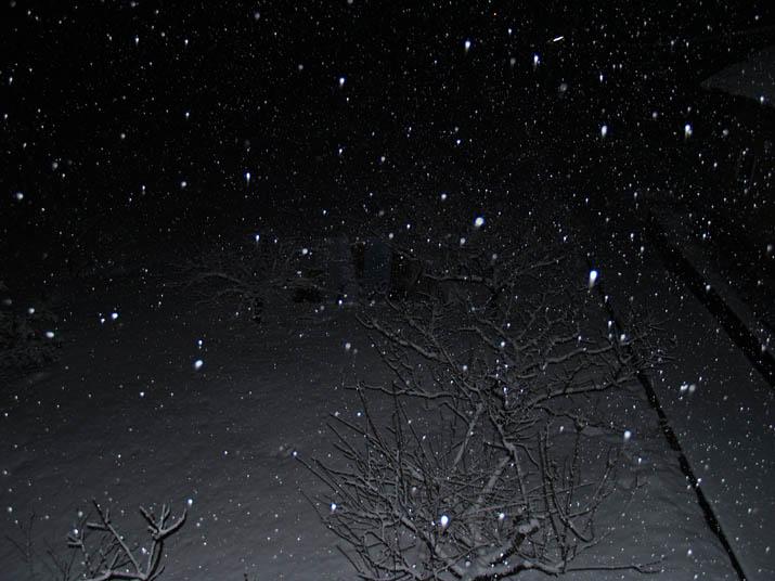 110125 深夜の雪.jpg