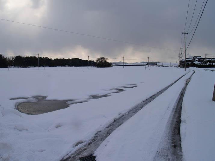110127 雪景色.jpg