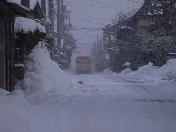 110130 日本交通のバス.jpg