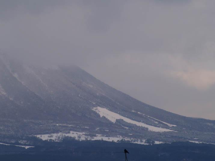 110212 桝水スキー場の明かり.jpg