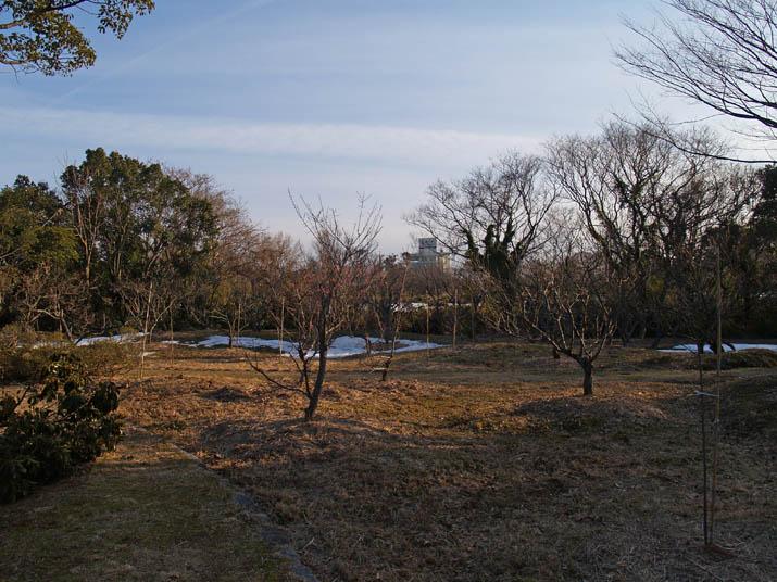 110220 旧米子ハイツ梅園.jpg