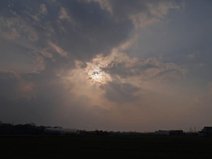 110225 夕方太陽.jpg