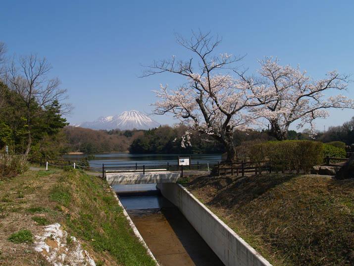 110415 岡成池の水路と大山.jpg