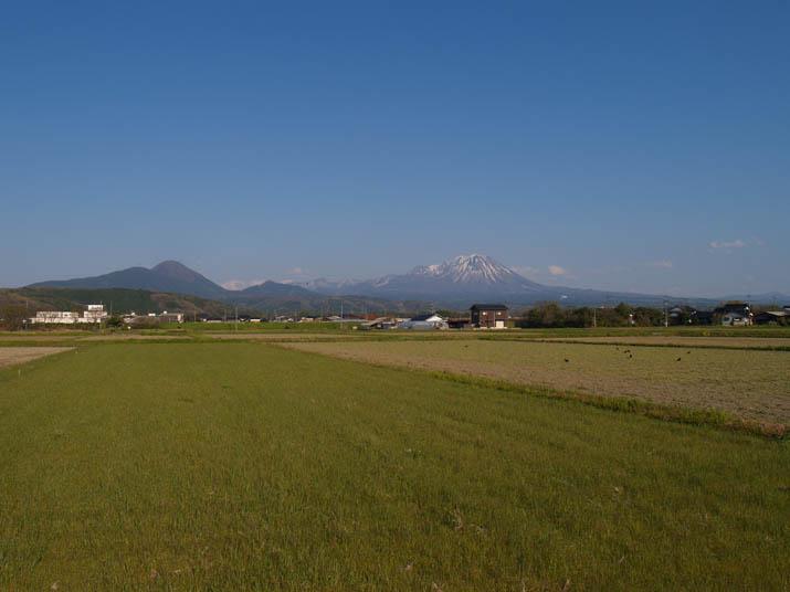 110425 緑の草原と大山.jpg