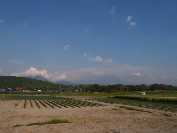 110517 今日の大山.jpg