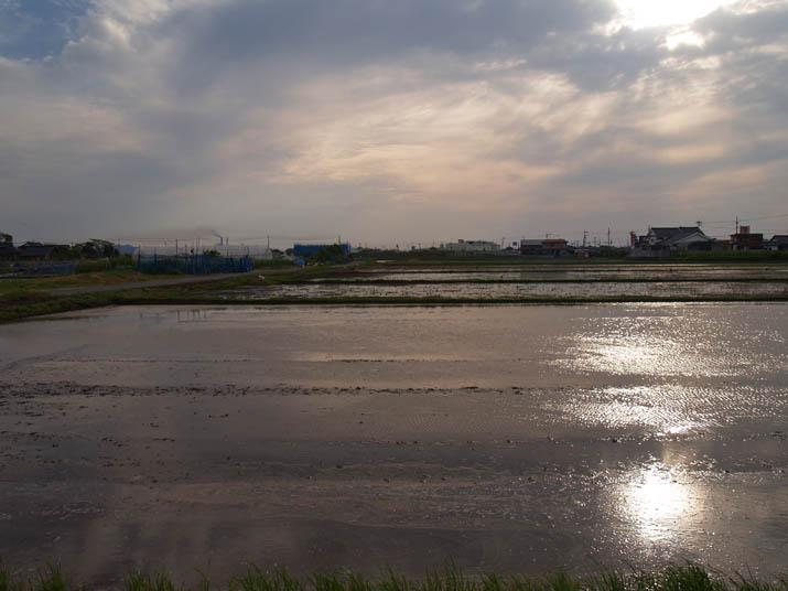 110525 水田の始まり.jpg
