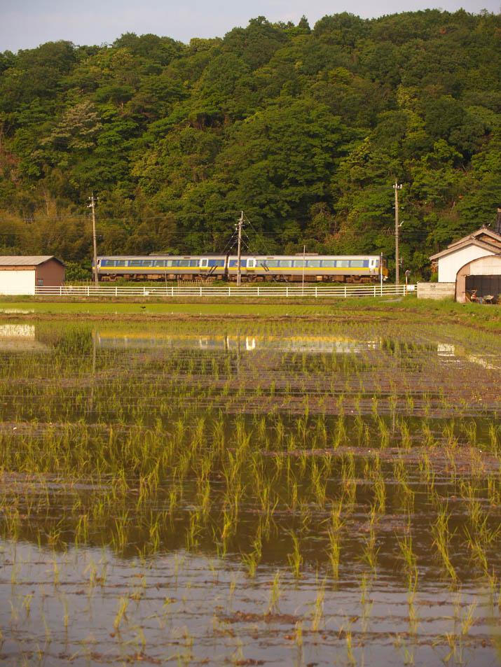 110601 水田と特急スーパーおき4号.jpg