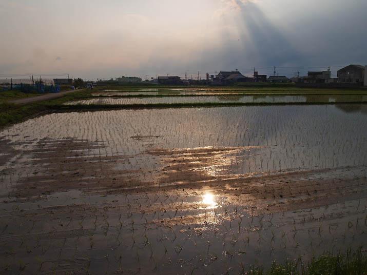 110602 夕日の反射.jpg