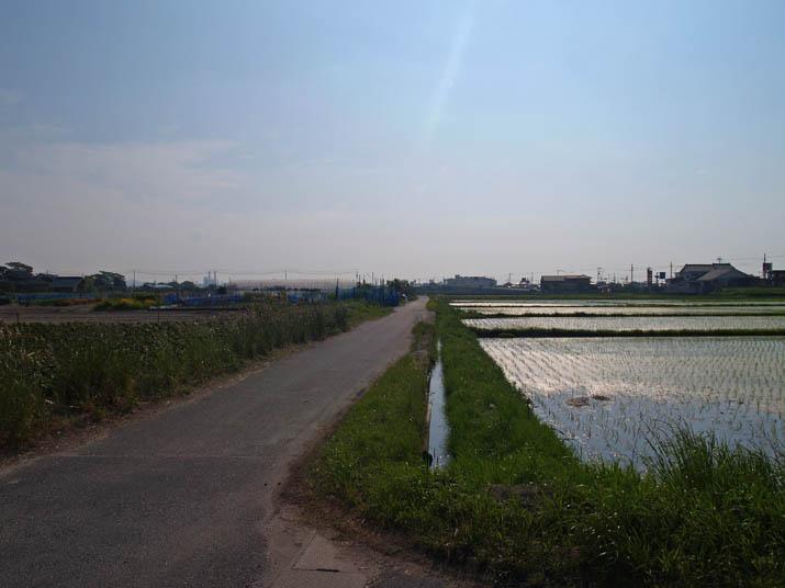 110607 小波浜町内の能動.jpg