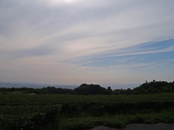 110611 茶畑と米子市街.jpg