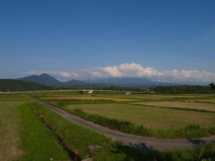 110617 大山と緑の田畑.jpg