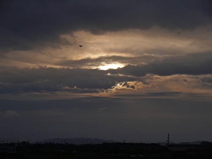 110626 夕方の雲.jpg
