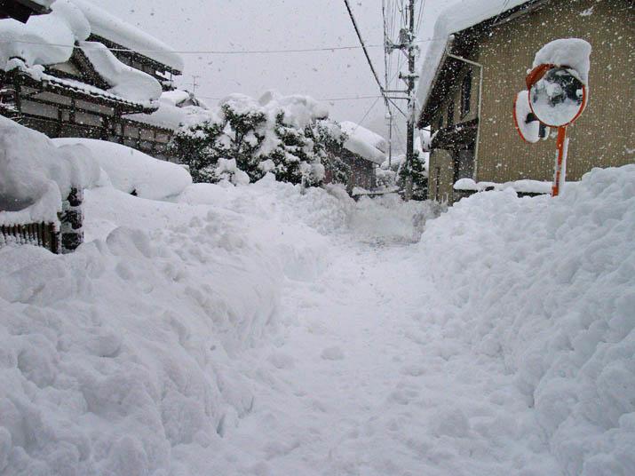 110701 元旦の大雪.jpg