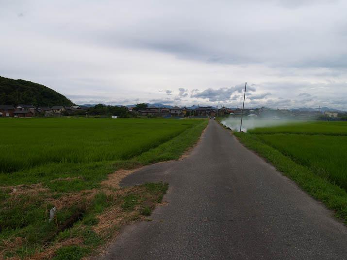 110718 水田と野焼き.jpg