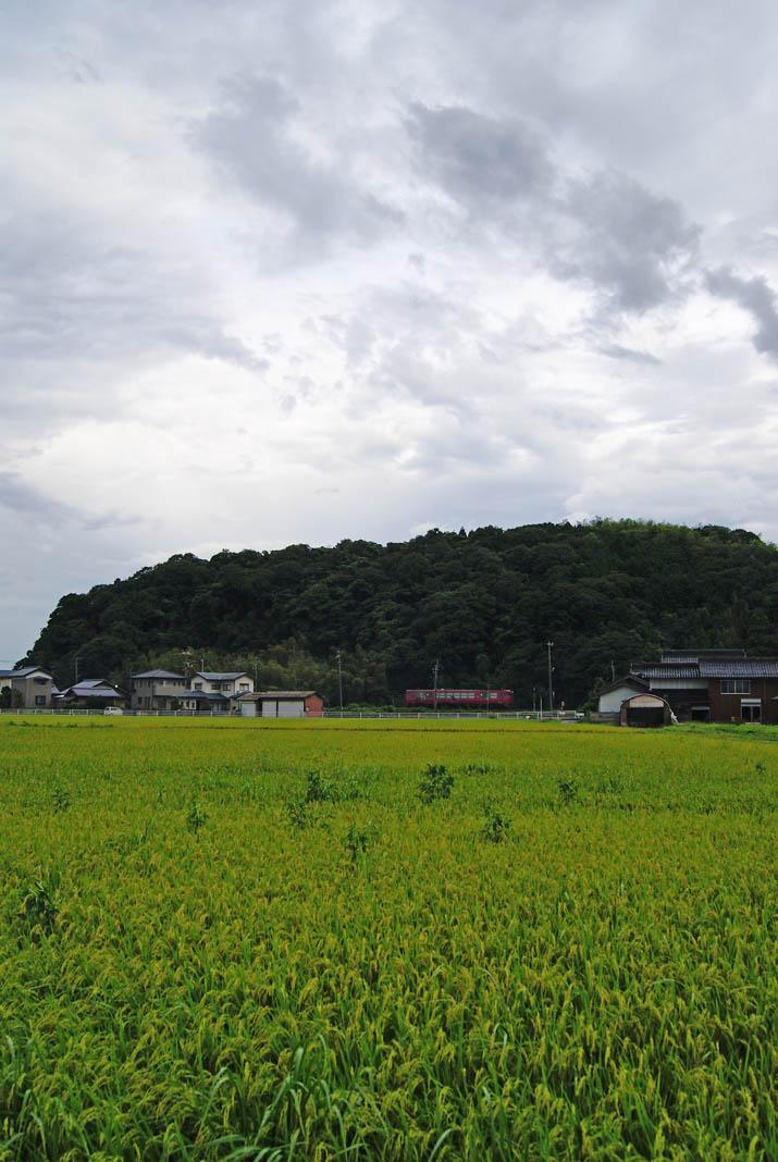 110901 稲と雲と山陰線列車dia2.jpg