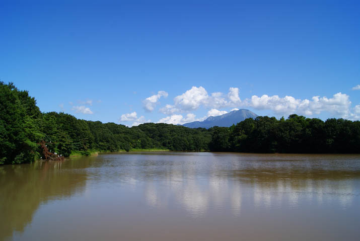 110906 岡成池の水も濁って・・.jpg