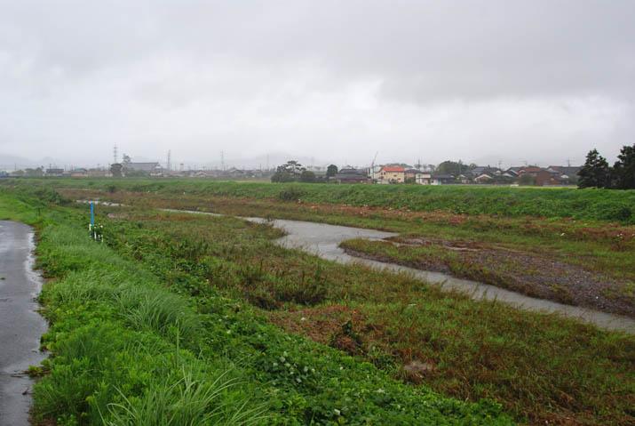 110920 今日の佐陀川.jpg
