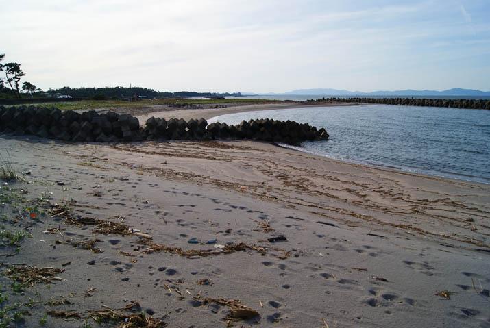 110925 ゴミも目立つ淀江の海岸.jpg
