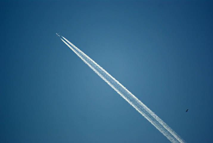 111013 飛行機雲.jpg