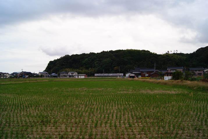 111024 壺瓶山と列車と稲.jpg