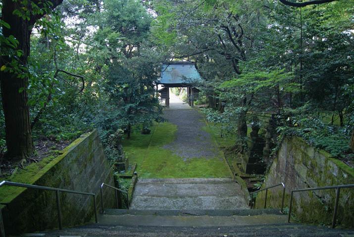 111104 日吉神社の参道.jpg